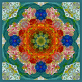 A Flower Mandala Photographic Print by Alaya Gadeh