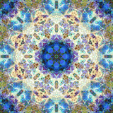 Filigree Shining Mandala Ornament from Flower Photographs, Conceptual Layer Work Photographic Print by Alaya Gadeh