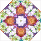 Ornamental Rhomb from Flowers Photographic Print by Alaya Gadeh