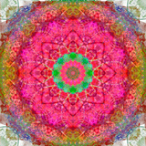 Montage of Flowers, Photographies in a Symmetrical Ornament, Mandala Photographic Print by Alaya Gadeh