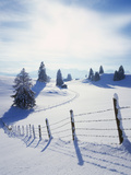 Germany, Bavaria, AllgŠu, Snow Scenery, Back Light, Alps, Mountains, Loneliness, Mountains, Winter Photographic Print by Herbert Kehrer
