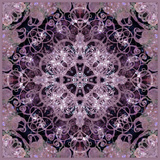 Symmetric Montage of Flowers Photographic Print by Alaya Gadeh