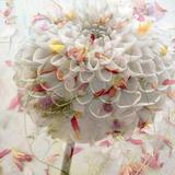 Floral Montage Fotografisk tryk af Alaya Gadeh