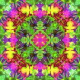 Multicolor Blossom Design from Zinnia, Gerber Daisy and Texture, Symmetric Photographic Layer Work Photographic Print by Alaya Gadeh