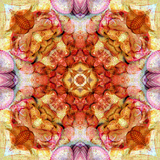 A Floral Mandala with Seahells Photographic Print by Alaya Gadeh