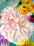 A Floral Montage Photographic Print by Alaya Gadeh