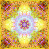 A Flower Mandala, Photographic Layer Work from Flowers Photographic Print by Alaya Gadeh