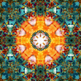 A Mandala from Flower Photographs Photographic Print by Alaya Gadeh