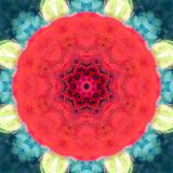 Mandala Ornament from Red Blooming Flowers, Conceptual Photographic Layer Work Photographic Print by Alaya Gadeh