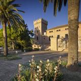 Spain, Majorca, Andratx, Castell De Son Mas, Palm Photographic Print by Rainer Mirau