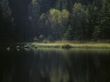 France, Vosges Mountains, Lac Du Lispach in Autumn Photographic Print by Andreas Keil