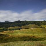 Sheep Pasture in the Moonlight, Wharariki, Tasman, South Island, New Zealand Photographic Print by Rainer Mirau