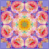 Symmetric Multicolor Layer Work of Blossoms Photographic Print by Alaya Gadeh