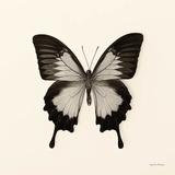 Butterfly III Plakater af Debra Van Swearingen