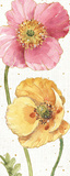 Spring Softies IV Pôsteres por Lisa Audit