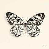 Schmetterling V Poster von Debra Van Swearingen