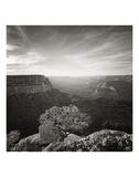 Canyon Evening Reprodukcje autor Steve Silverman