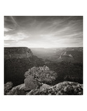 Canyon Evening Prints by Steve Silverman