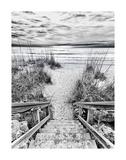 Follow the Steps Affiches par Mary Lou Johnson