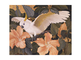 Cockatoos and Pink Hibiscus Poster by Jesse Arms Botke