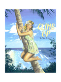 Climb Up Prints by Scott Westmoreland