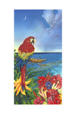 Parrot Dice Print by Scott Westmoreland