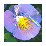 Purple Flower Prints by Scott Westmoreland