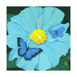 Blue Flower Posters by Scott Westmoreland