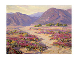 Spring Bloom in the Desert Prints by Benjamin Chambers