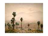 Palm Springs Desert Posters av Gunnar Widforss