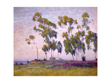 Eucalyptus and Moonrise Print by Maurice Braun