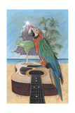 Macaw-Garita Posters by Scott Westmoreland