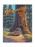 Mariposa Grove Prints by Kerne Erickson
