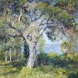 The Oak Posters by Guy Rose