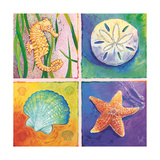 Sea Life Panel II Prints by Scott Westmoreland