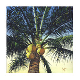 Branching Out Prints by Scott Westmoreland