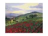 Timeless Tuscany Prints by Scott Westmoreland