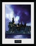 Harry Potter - Hogwarts Painted Wydruk kolekcjonerski