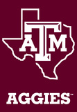 NCAA Texas A&M Aggies 2-Sided Banner with Pole Sleeve Flag