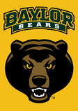 NCAA Baylor Bears 2-Sided Banner with Pole Sleeve Flag