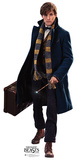 Newt Scamander - Fantastic Beasts and Where to Find Them Cardboard Cutouts