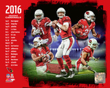 Arizona Cardinals 2016 Team Composite Photo