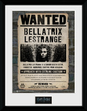 Harry Potter - Bellatrix Collector-tryk