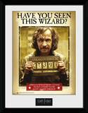Harry Potter - Sirius Azkaban Collector-tryk