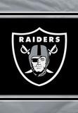 NFL Oakland Raiders House Banner Flag