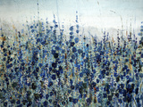 Blue Hollyhock Giclee Print by O'Toole O'Toole