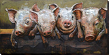 Pig Posse Metal Wall Art Art