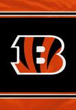 NFL Cincinnati Bengals House Banner Flag