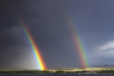 Natures Twin Towers Reproduction photographique par  Darren White Photography