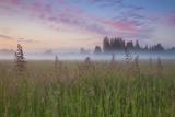 Battle Ground Sunrise Reproduction photographique par  Darren White Photography